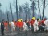 Detenidos por incendio no son mapuches, por tanto, no hay LeyAntiterrorista